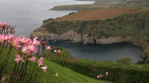 Fotogalerie: Azoren